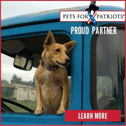 Proud Partner